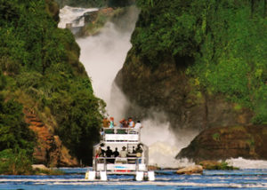 Luanch- cruise
